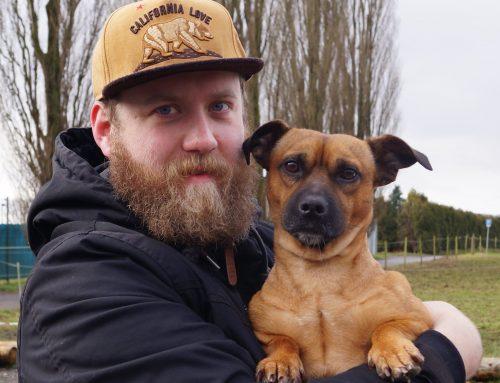 Vom Straßenhund zum treuen Weggefährten