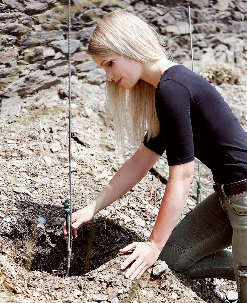 Sarah Hulten beim Pflanzen der Reben. Foto: Jacqueline Carina Werrmann